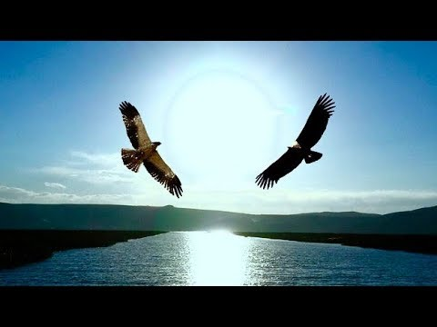 The Eagle & The Condor Prophecy: Elder's Interpretations, From Several Nations (HD)